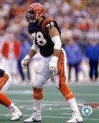 Anthony Munoz Cincinnati Bengals 8X10 Photo