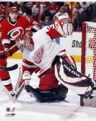 Curtis Joseph Detroit Red Wings 8x10 Photo