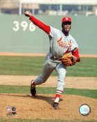 Bob Gibson St. Louis Cardinals 8x10 Photo