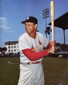 Stan Musial Glossy Card Stock Cardinals 8X10 Photo