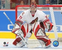 Curtis Joseph Coyotes 8x10 Photo