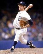 Mark Fidrych Detroit Tigers 8X10 Photo