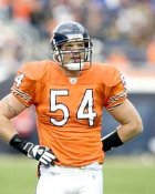 Brian Urlacher Chicago Bears 8X10 Photo