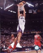 Peja Stojakovic Sacramento Kings 8X10 Photo