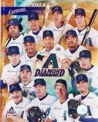 Arizona Diamondbacks 2003 8X10 Photo