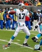 Jake Delhomme LIMITED STOCK Carolina Panthers 8X10 Photo