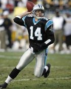Brett Basanez Carolina Panthers 8X10 Photo