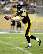 Daniel Sepulveda Pittsburgh Steelers 8X10 Photo