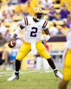 Jamarcus Russell LSU 8X10 Photo