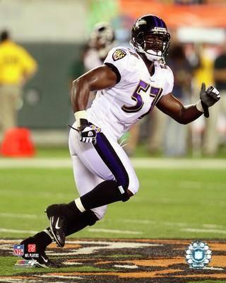 Bart Scott Baltimore Ravens 8X10 Photo