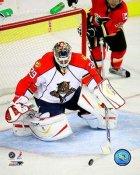 Tomas Vokoun Florida Panthers 8x10 Photo