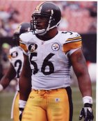 Lamarr Woodley Pittsburgh Steelers 8x10 Photo