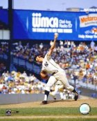 Sparky Lyle New York Yankees 8X10 Photo
