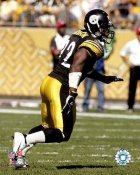 James Harrison LIMITED STOCK Pittsburgh Steelers 8x10 Photo