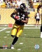 Cedrick Wilson Pittsburgh Steelers 8x10 Photo)
