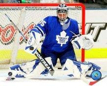Vesa Toskala Maple Leafs 8x10 Photo