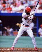 Willie McGee St. Louis Cardinals 8X10 Photo