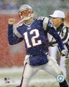 Tom Brady LIMITED STOCK New England Patriots 8X10 Photo