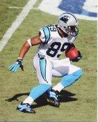 Steve Smith LIMITED STOCK Carolina Panthers 8X10 Photo