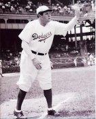 Babe Ruth Brooklyn Dodgers 8X10 Photo