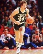 Danny Ainge Boston Celtics 8X10 Photo LIMITED STOCK