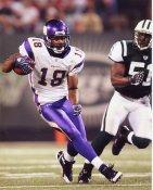 Sidney Rice Minnesota Vikings 8X10 Photo