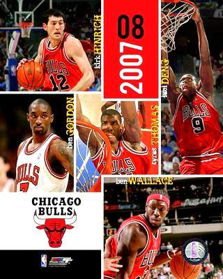 Bulls 2007 Team Composite 8X10 Photo LIMITED STOCK
