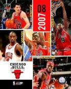 Bulls 2007 Team Composite 8X10 Photo LIMITED STOCK