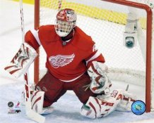Dominik Hasek Detroit Red Wings LIMITED STOCK 8x10 Photo