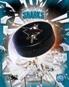San Jose Sharks Team Puck Logo 8x10 Photo