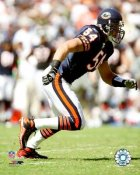 Brian Urlacher Chicago Bears 8X10 Photo LIMITED STOCK