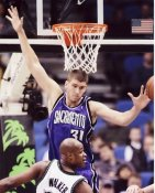 Spencer Hawes Sacramento Kings 8X10 Photo LIMITED STOCK