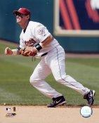 Craig Biggio LIMITED STOCK Houston Astros 8X10 Photo