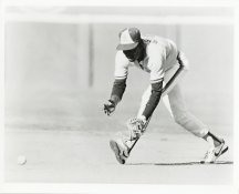 Mr. Wiggens Wire Photo 8x10 Padres