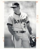 Gary Gaetti Wire Photo 8x10 Angels