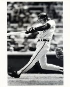 Billy Ripkin Wire Photo 8x10 Orioles