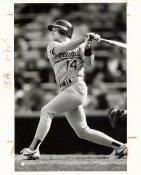 Mike Bordick Wire Photo 8x10 Athletics