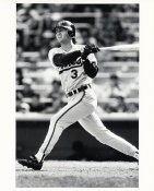 Billy Ripken Wire Photo 8x10 Orioles