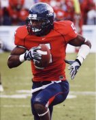 Antoine Cason Arizona 8X10 Photo