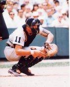 Bill Freehan Detroit Tigers 8X10 Photo