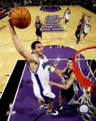 Brad Miller LIMITED STOCK Sacramento Kings 8X10 Photo