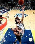 Darko Milicic Memphis Grizzlies 8X10 Photo LIMITED STOCK