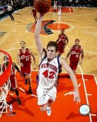 David Lee LIMITED STOCK New York Knicks 8X10 Photo