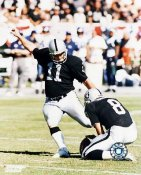 Sebastian Janikowski LIMITED STOCK Oakland Raiders 8X10 Photo