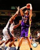 Pau Gasol Los Angeles Lakers 8x10 Photo LIMITED STOCK