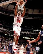 Tyrus Thomas LIMITED STOCK Chicago Bulls 8X10 Photo