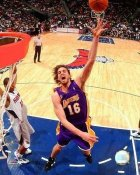 Pau Gasol Los Angeles Lakers 8x10 Photo LIMITED STOCK