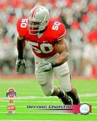 Vernon Gholston OSU Ohio State 8X10 Photo