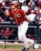 Austin Kearns Cincinnati Reds 8x10 Photo LIMITED STOCK