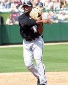 Willie Harris Chicago White Sox 8X10 Photo